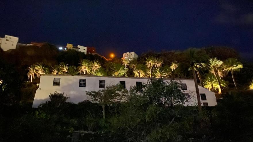 El  palmeral de la Quinta Verde de la capital estrena iluminación