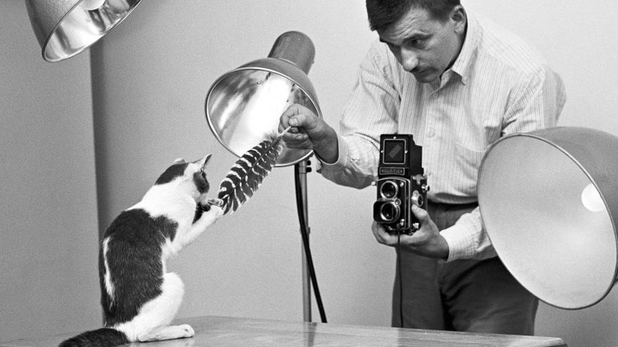 Una sesión de fotos realizada en el estudio casero de Chandoha, en Long Island (1955)