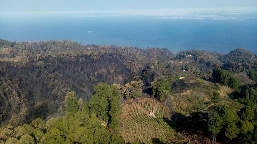 El Cabildo da por extinguido  este miércoles el gran incendio forestal de Garafía dos meses después de propagación