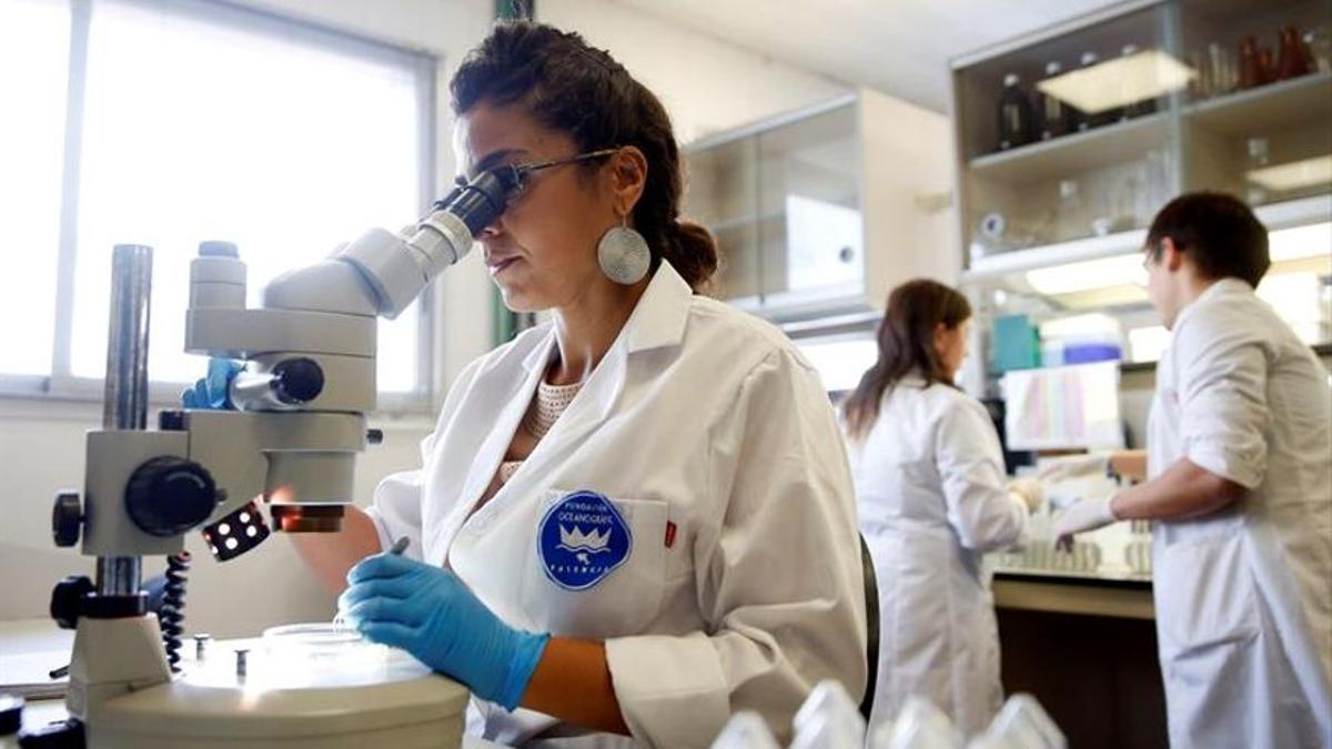 Una científica examina una muestra a través del microscopio