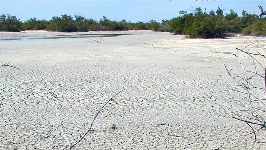 La sequía afecta el 71 % del territorio de Cuba, que busca soluciones a corto plazo