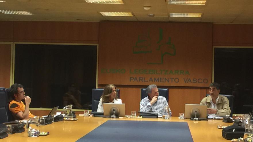 Representantes de Erne y Esan comparecen en el Parlamento vasco.