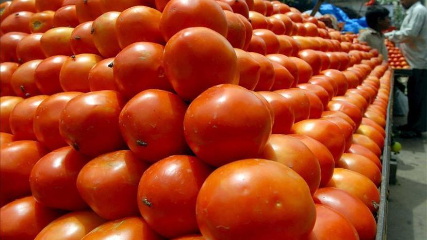 El Gobierno argentino pide reducir el consumo de tomate para evitar la escasez