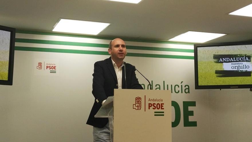 """El PSOE-A insiste en que Javier Arenas es el """"muñidor"""" de la moción de censura en Marbella"""