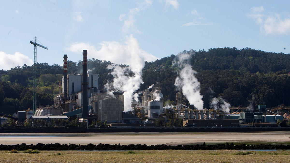 Vista de la fábrica de la empresa papelera ENCE.