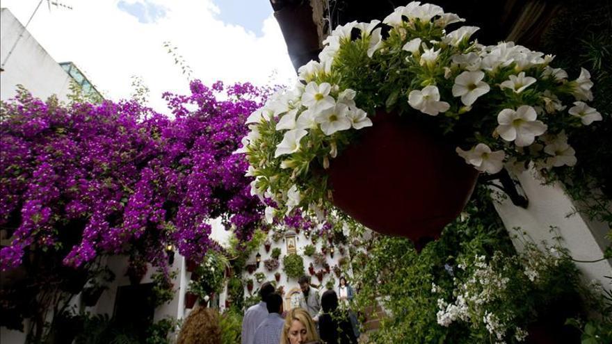 Los Patios de Córdoba cierran su primer año como Patrimonio de la Humanidad