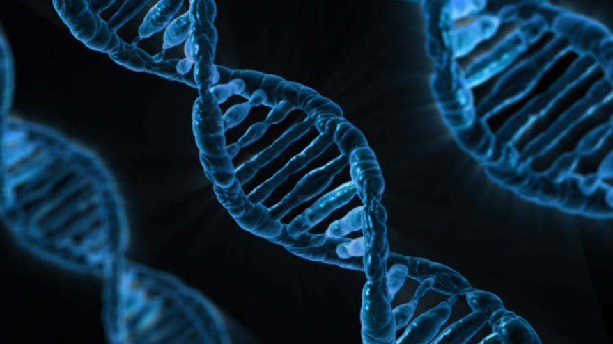 El ADN, crucial para que los adoptados puedan encontrar a su familia biológica