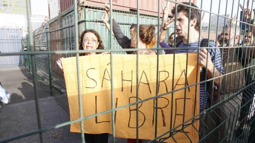 De la llegada de los activistas #5