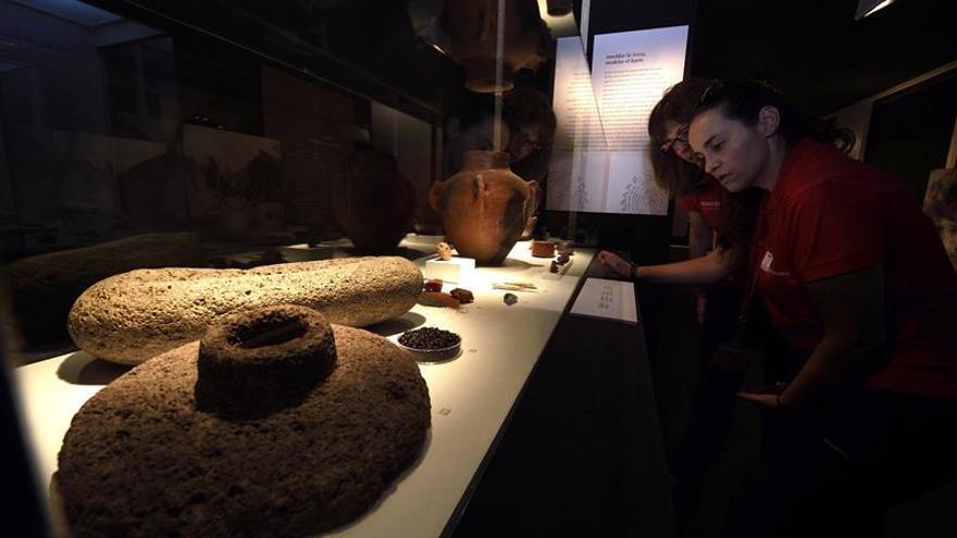 """Visitantes observan algunas de las piezas de la Cueva Pintada de Galdár dentro la exposición """"El largo viaje... de Altamira a la Cueva Pintada""""."""