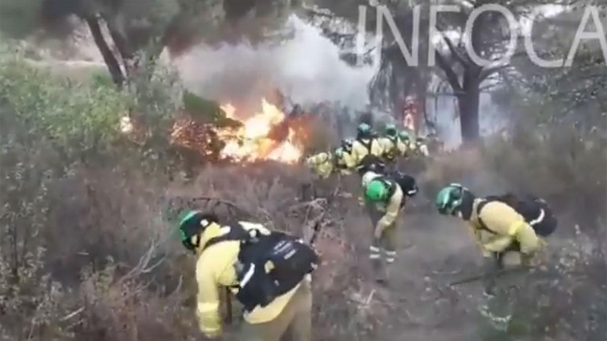 Incendio en Alcaracejos