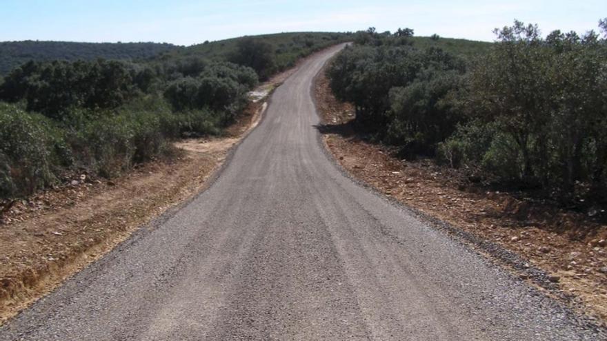 El camino de acceso a la casa de caza en Cabañeros de los Aznar-Oriol / EA.