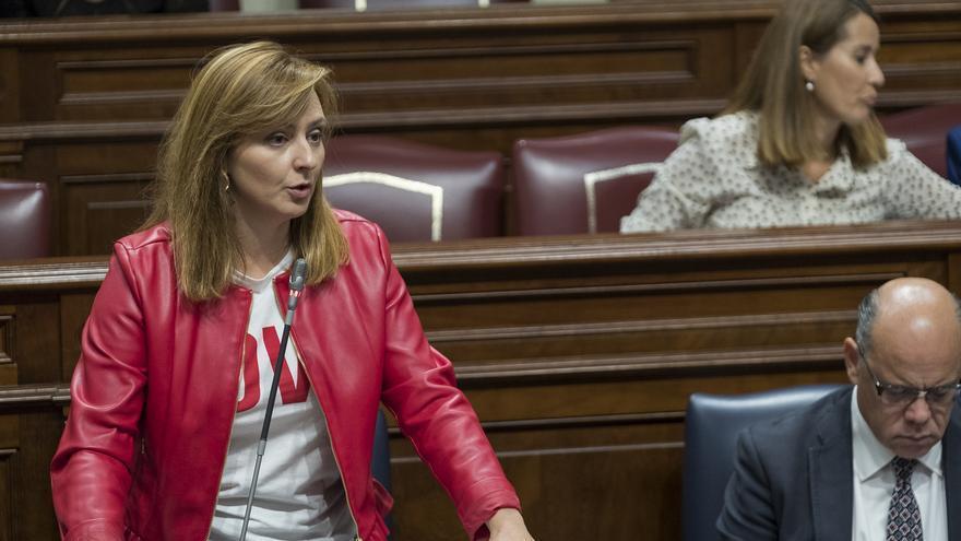 La consejera de Medio Ambiente y Política Territorial, Nieves Lady Barreto.