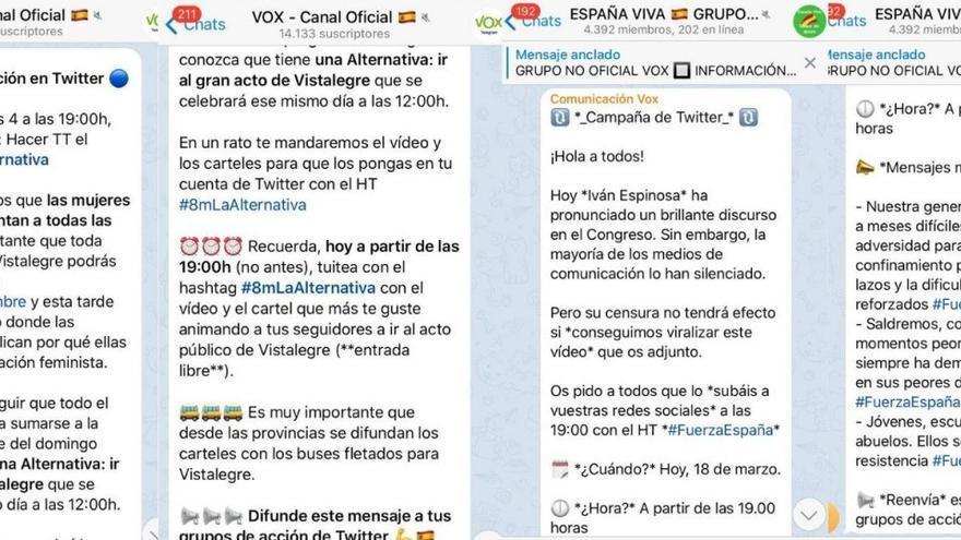 Mensajes de la dirección de Vox indicando a sus simpatizantes cuándo y cómo impulsar mensajes en las redes sociales para aumentar su impacto.