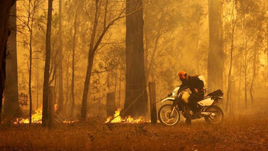 Declaran el estado de emergencia por los incendios en el este de Australia