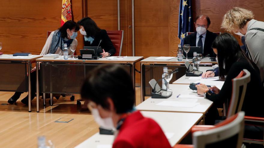 Narbona defiende que el Senado mantenga su actividad en la campaña madrileña