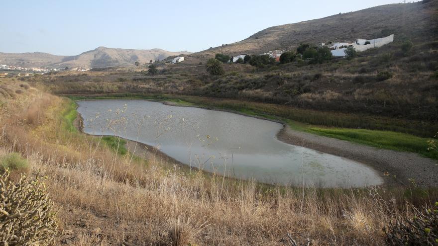 Última charca con agua el Parque Agoambiental de San Lorenzo.