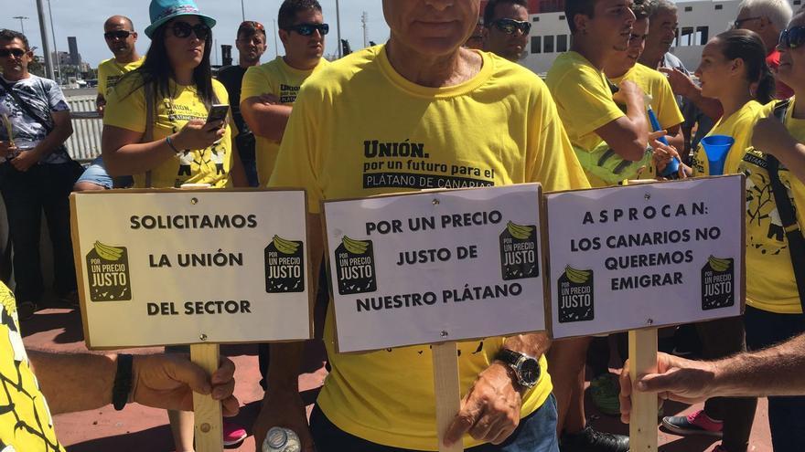 Imágenes de la manifestación de los agricultores del plátano de La Palma,