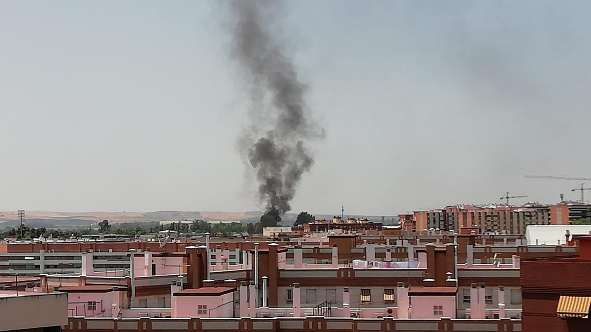 Vista de la columna de humo