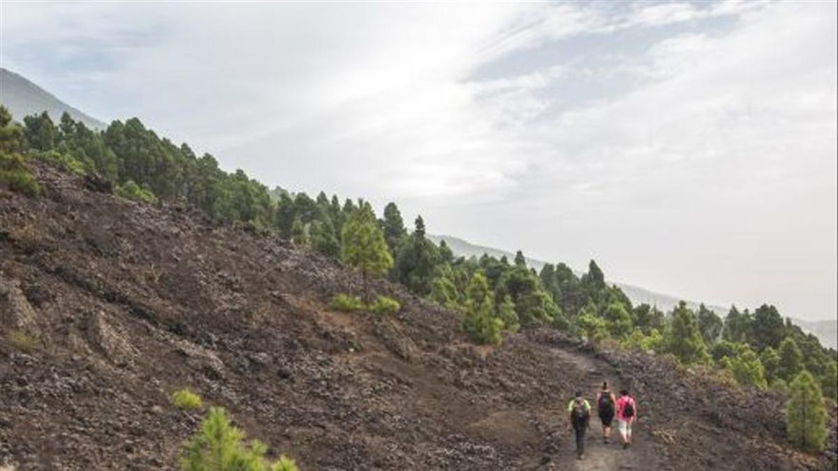 Imagen de archivo de caminantes por un sendero de La Palma.