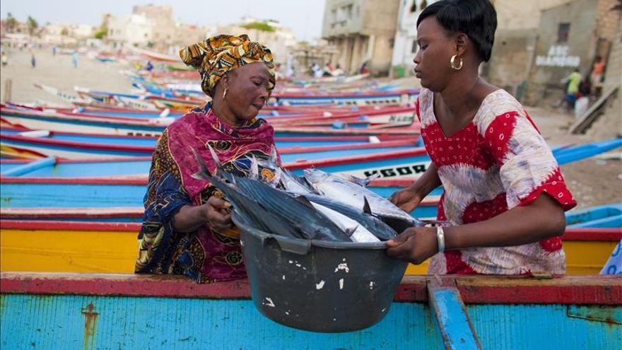 La industria pesquera no reconoce lo suficiente la labor de la mujer, según la FAO