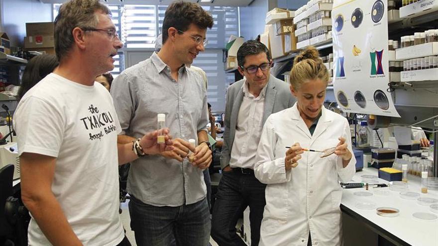 Científicos y chefs crearán platos adaptados a la genética de cada persona