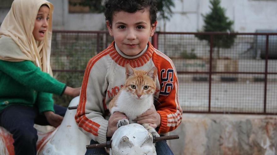 Mohamed Alaa protege a niños y animales en Siria. Foto: Il gattaro d'Aleppo