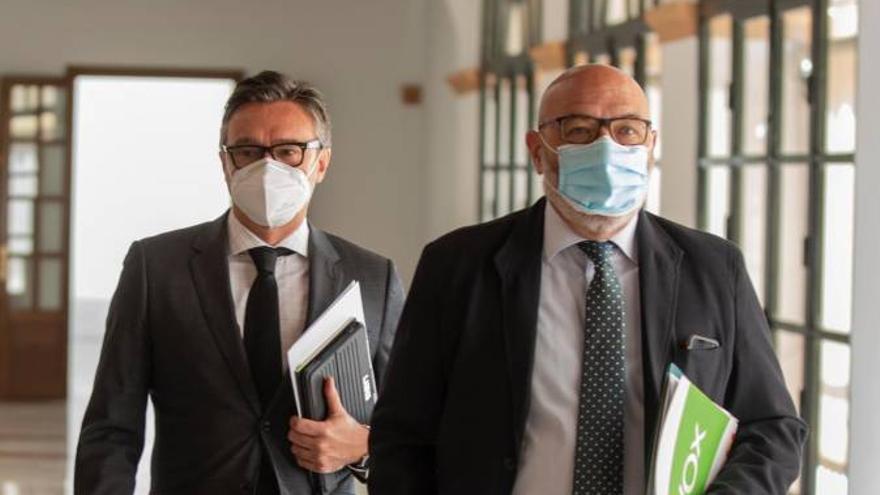 El portavoz de Vox en Andalucía, Alejandro Hernández, junto al diputado Manuel Gavira, que presidirá la comisión por la reconstrucción de Andalucía.