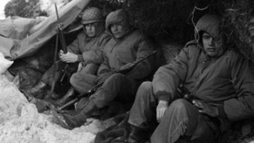 Combatientes en Malvinas
