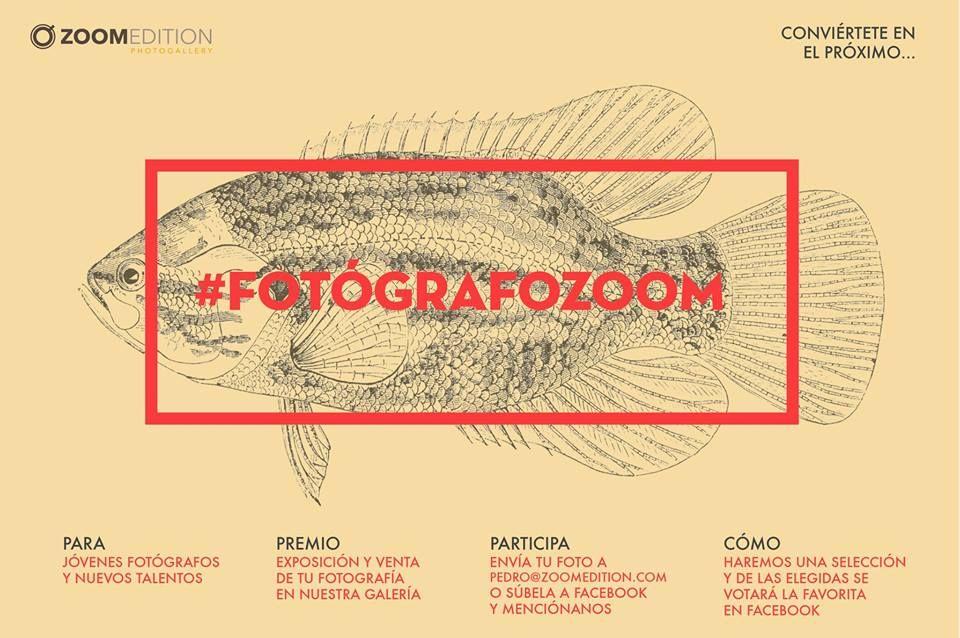 fotografozoom