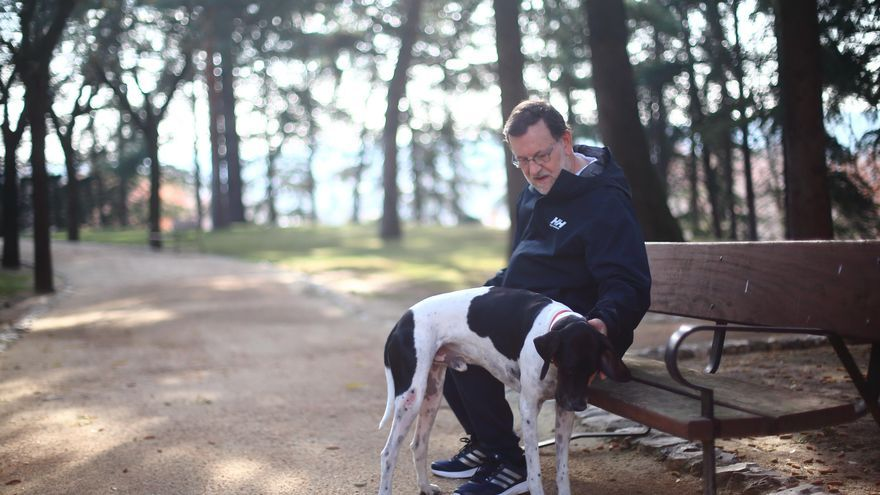 Mariano Rajoy pasea con su perro en la jornada de reflexión. / PP
