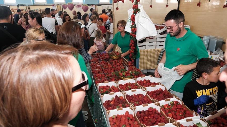 Uno de los puestos en que se servían fresas frescas en la séptima edición de la feria