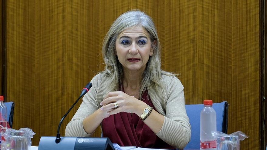 """Del Pozo defiende que las nuevas bases reguladoras """"potencian y mejoran el control sobre subvenciones y su uso"""""""