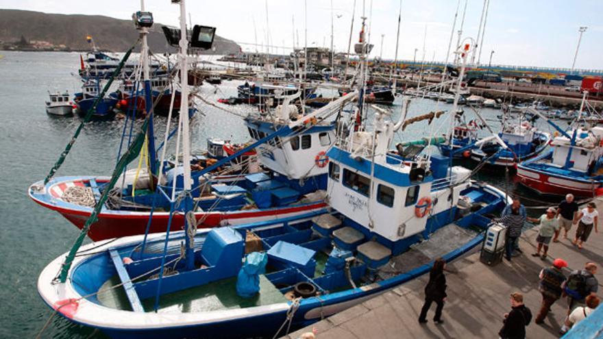 Pesqueros artesanales, en el puerto de Los Cristianos (Arona)