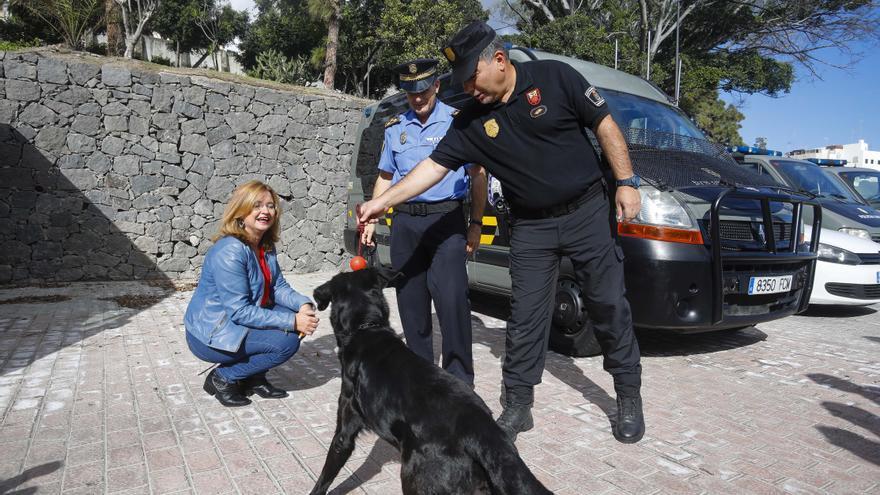 'Duna', la perra adoptada por la Policía Local, junto a la concejala de Seguridad de Las Palmas de Gran Canaria, Encarna Galván