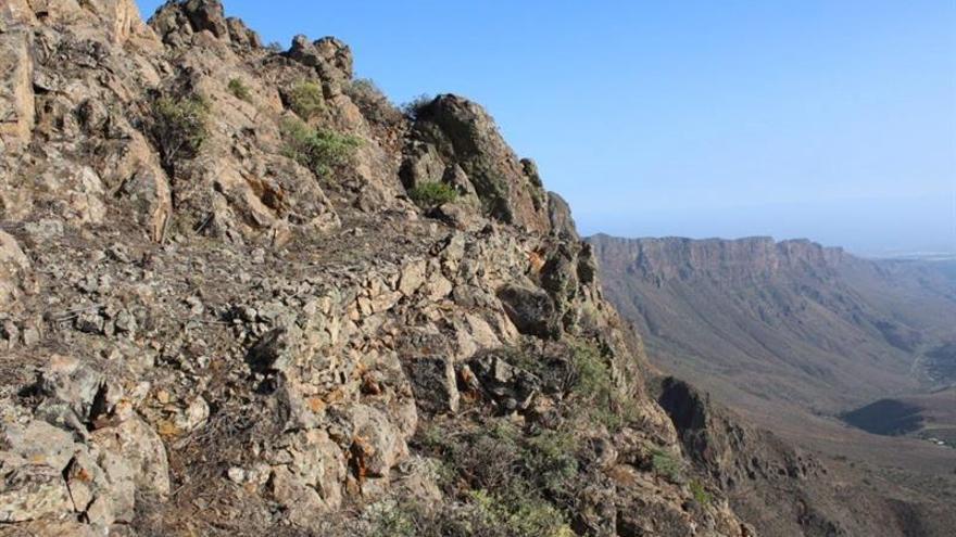 Foto cedida por Tibicena Arqueología y Patrimonio de una de las estructuras prehispánicas existentes en uno de los riscos del macizo de Amurga