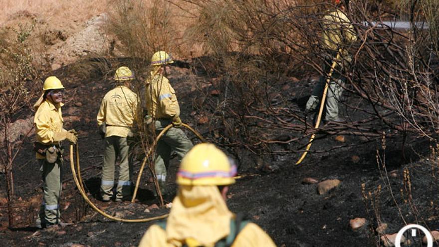 Efectivos del Infoca trabajando en un incendio forestal | MADERO CUBERO