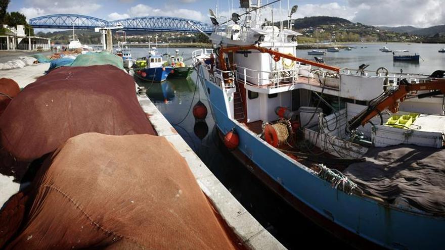 La pesca del pez espada mediterráneo se limitará a 10.500 toneladas en 2017