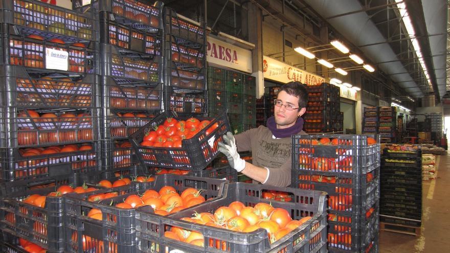 Los mayoristas de frutas y hortalizas y de pescado en Mercacórdoba incrementaron sus ventas durante 2013