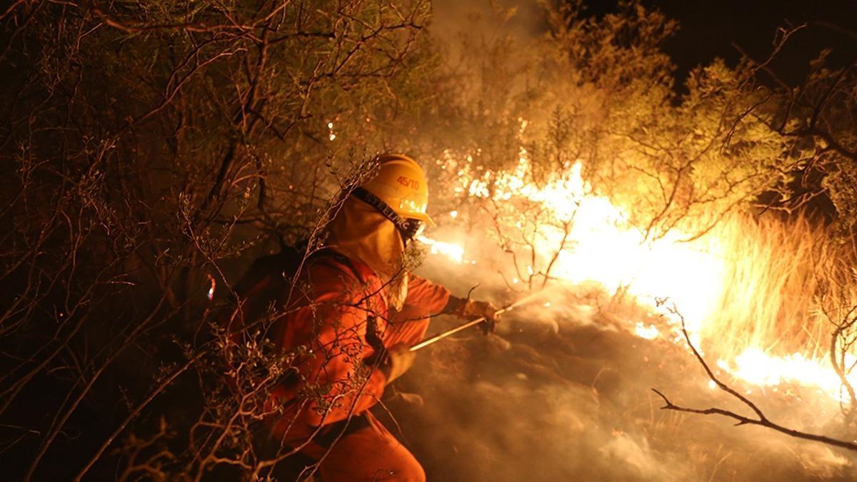 El calentamiento global genera, entre otras cosas, más incendios.