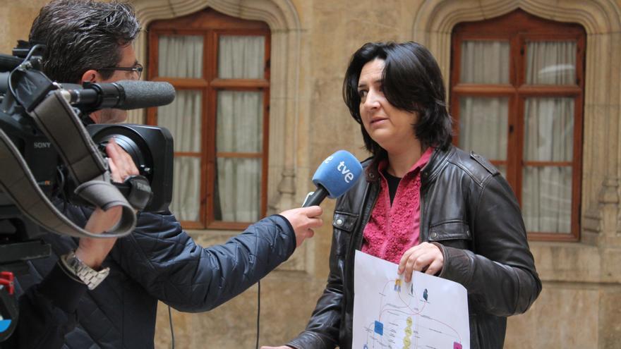 La diputada provincial valenciana de Esquerra Unida, Rosa Pérez Garijo