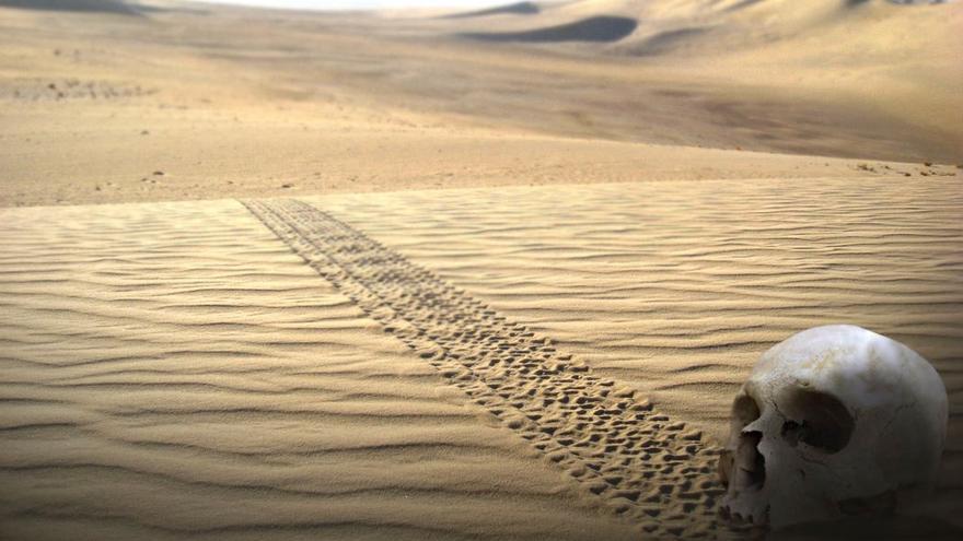 El conflicto del Sahara sigue sembrando sufrimiento y muerte a su paso. (Canarias Ahora).