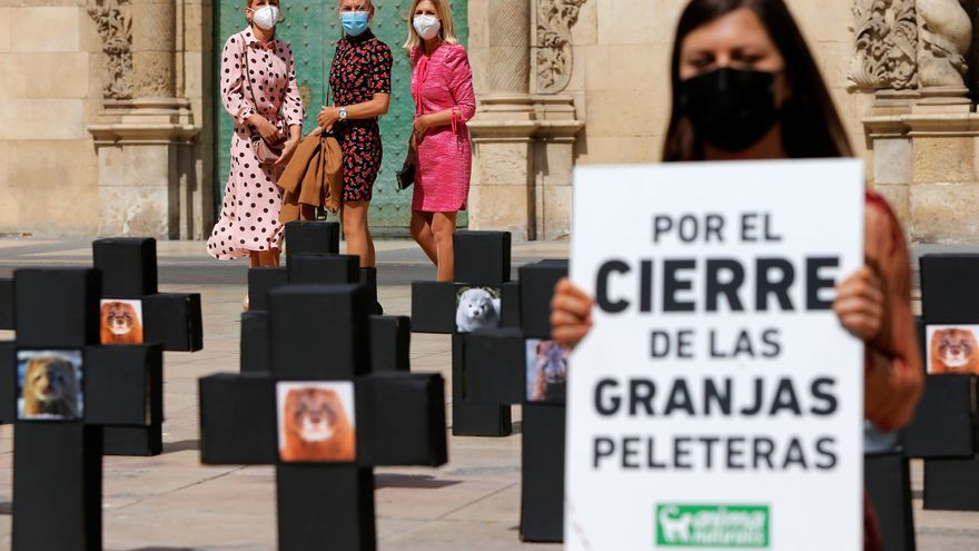 Un activista se desnuda en Alicante contra la industria peletera
