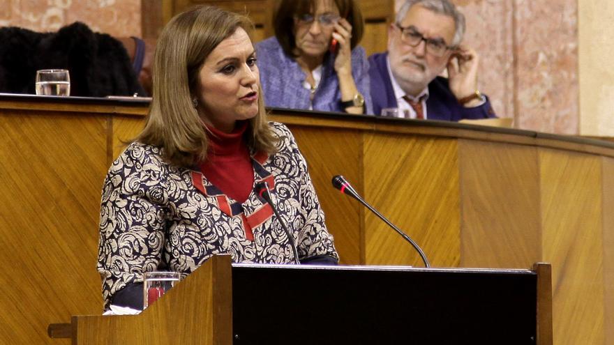 """Junta de Andalucía garantiza que """"ni existen solicitudes ni autorizaciones concedidas"""" de fracking."""