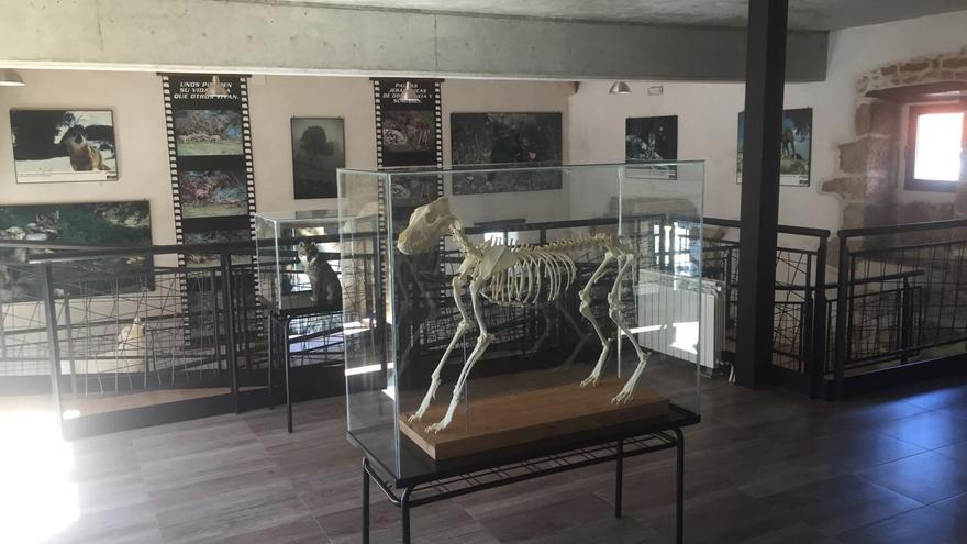 Una imagen del centro de interpretación lobo La Garganta