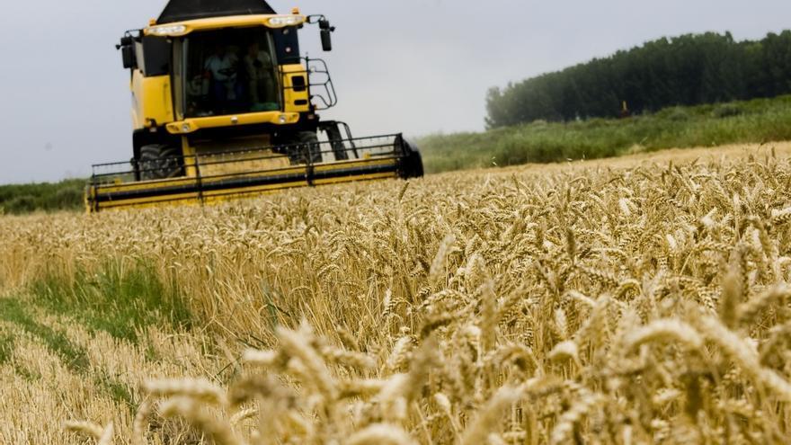 """UPA advierte de que un recorte en las ayudas agrícolas """"hundiría"""" a los agricultores españoles"""