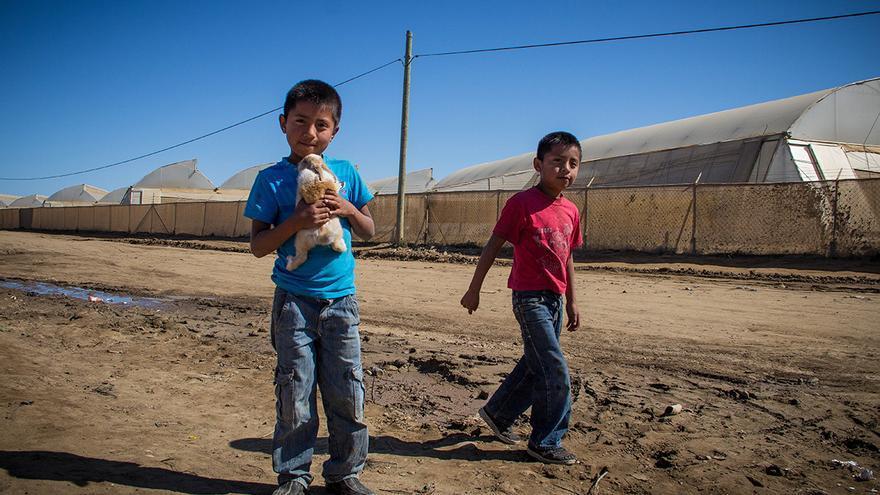 Niños del barrio chabolista 'El Vergel', ubicado junto al rancho 'Los Pinos'. / Foto: J.P. Martínez.