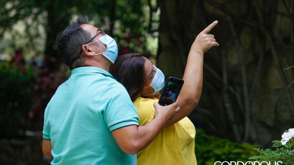 Unos turistas visitan los Patios el pasado mes de octubre