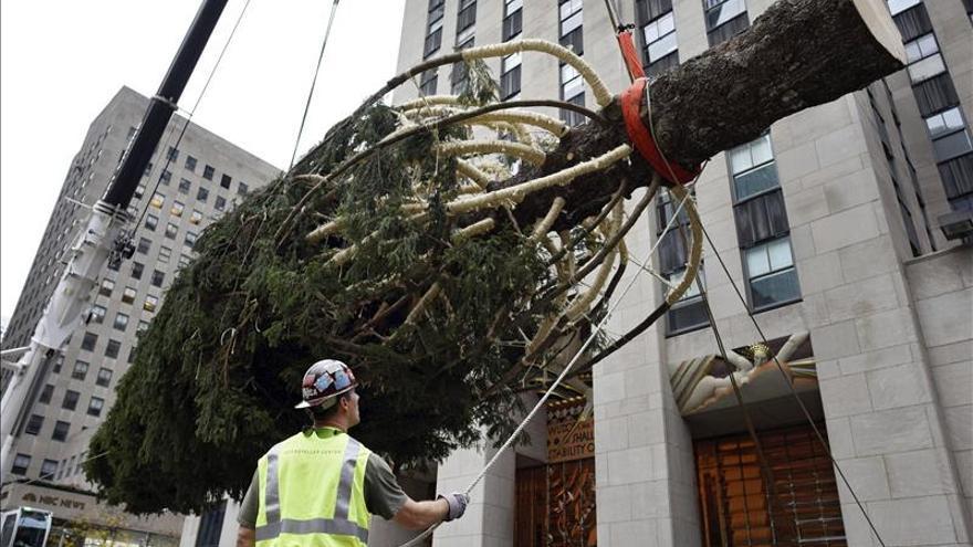 El emblemático árbol de Navidad del Rockefeller Center ya luce en Nueva York