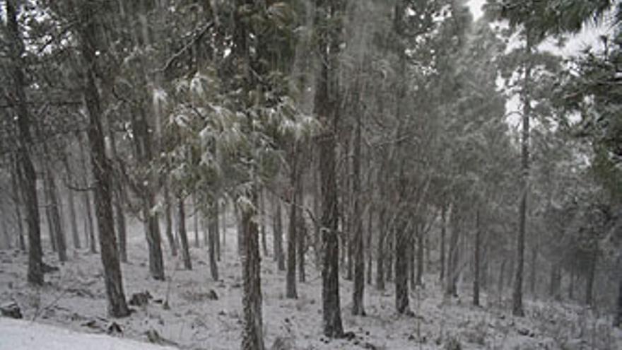 Nieve en la cumbre de Gran Canaria. (RAYCO SAAVEDRA)