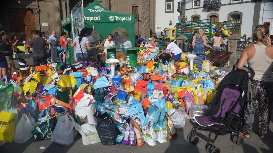 Una campaña recauda 32,5 toneladas de alimentos para animales abandonados (Francisco González)